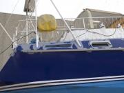 DSCF6635